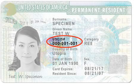 Permanent Resident Green Card
