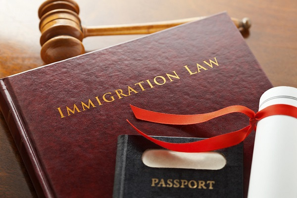 Image result for Immigration attorney
