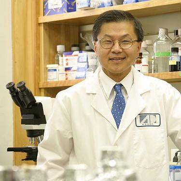 David Ho, Chinese American immigrant
