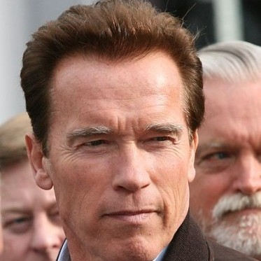 Arnold Schwarzenegger, Austrian American immigrant