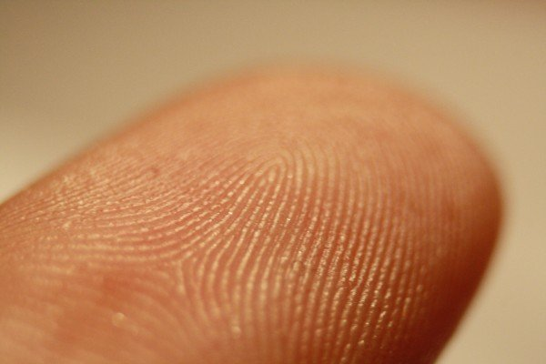 fingerprint to be used as part of a criminal background check