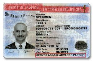 Advance Parole EAD Combo Card for tn applicant