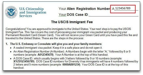 Where Can I Find My Alien Registration Number Citizenpath