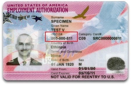 ead card received during I-485 timeline