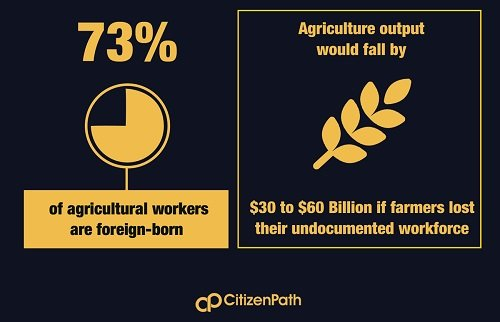 Infographic: 73% of agricultural workers are foreign-born. Agricultural output would drop $30-60 billion if farmers lost their undocumented workforce.
